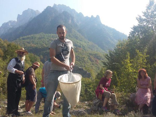 🇦🇱 [Albania] 🐟 Valbona BioBlitz – Rosemary